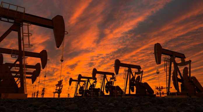 Crude price collapse will finally force US oil industry to cut production or go bust