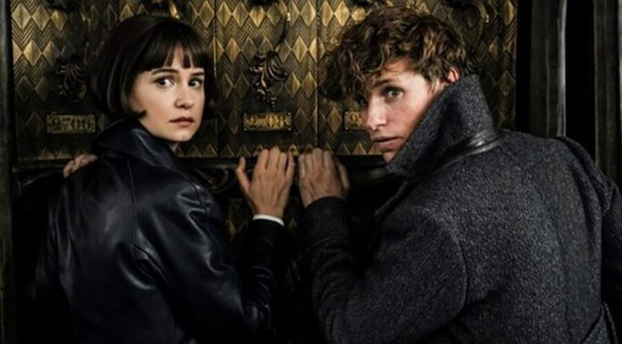 "In the new ""Fantastic beasts"" will be two characters from the ""Harry Potter"""