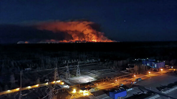 Vilfand said the main causes of fire danger in Chernobyl